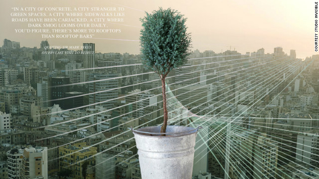 Artist's impression of a sapling Savior tree in a basic tin pot. Melki claims that this simple method will avoid the need for complicated drainage systems. 