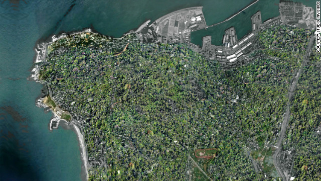 A computer generated aerial view of the city after Wonder Forest has been installed. Melki says: &quot;Just imagine: The world's first rooftop garden city.&quot;