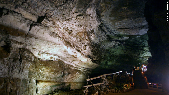 Mammoth Cave National Park in Kentucky was established in 1941 and hosts a variety of interconnected ecosystems.