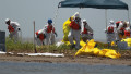 BP fighting fake spill claims