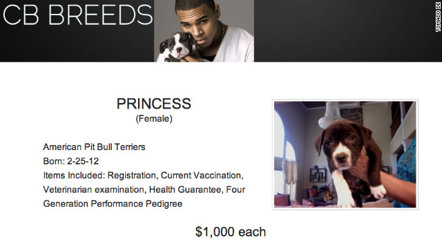 Chris Brown vende cachorros pitbull por internet a 1.000 dólares cada uno