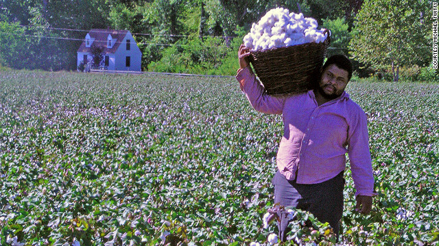 The cook who picks cotton: reclaiming my roots