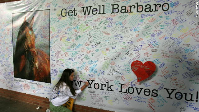 Hundreds of fans signed a giant &quot;Get Well&quot; card for Barbaro. Although efforts were made to save the colt's leg with pioneering surgery, he eventually had to be put down. 