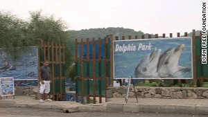 Dolphin parks like the one that held Tom and Misha are common in Turkey\'s tourist areas but aren\'t fully regulated.