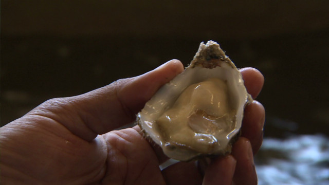 FDA urges removal of Korean shellfish from stores