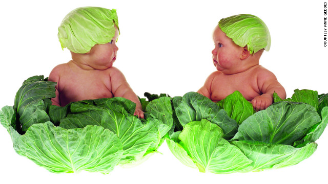 &quot;Cabbage kids&quot; 
