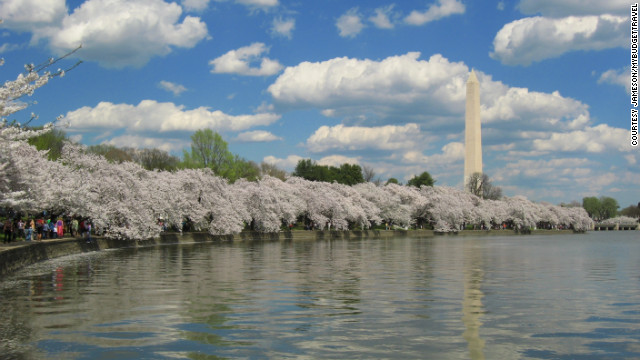 As you might guess, D.C. is the most patriotic place to celebrate the holiday with a parade and plenty of pomp and circumstance taking place during special military ceremonies. <a href='http://www.budgettravel.com/slideshow/photos-12-memorial-day-getaways,7260/?cnn=yes' target='_blank'>See more photos at BudgetTravel.com</a>.