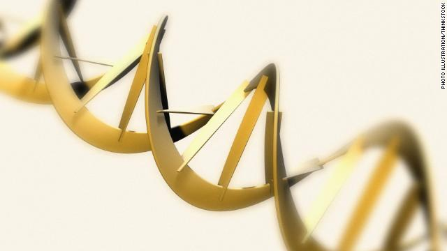 DNA project interprets 'book of life'