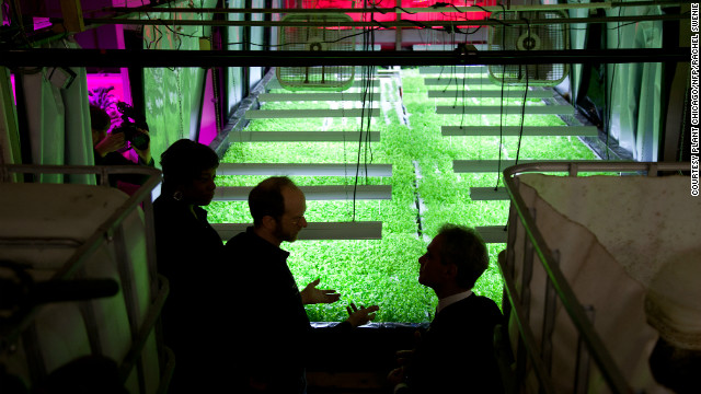 "Founder and executive director John Edel, center, recently showed Chicago mayor Rahm Emanuel, right, around the growing facility. Edel says: ""The key to this farm is the closing of loops: energy loops; resource loops; money loops, by keeping jobs local. If you can close the loops, you can make things more sustainable."""