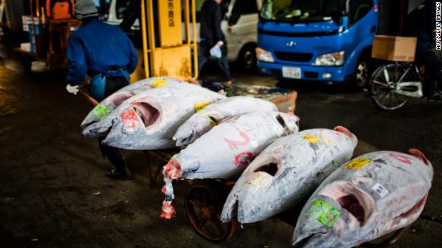 Científicos hallan cesio de Fukushima en atún capturado en Estados Unidos