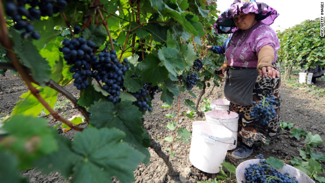 While the sales of wine from Georgia are still below pre-embargo levels, the value has doubled in the last five years. Boutique winery Schuchmann Wines retails their product at between $10 and $20.