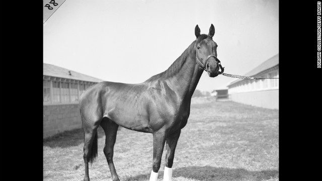Citation at Belmont Park in 1947. He would win the Triple Crown the following year.