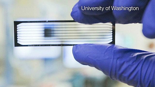 Descifran el genoma de un feto con muestras de sus padres