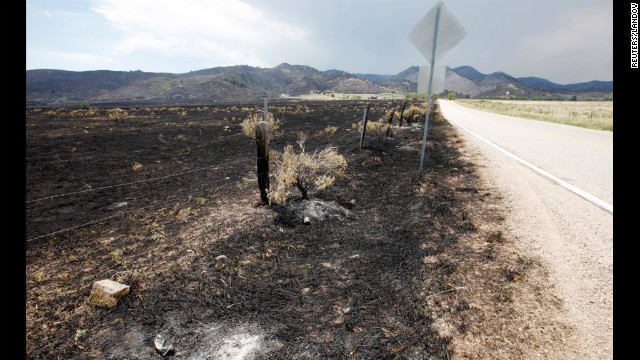 Flames scorched this area outside of Fort Collins where the High Park Fire has burned out.