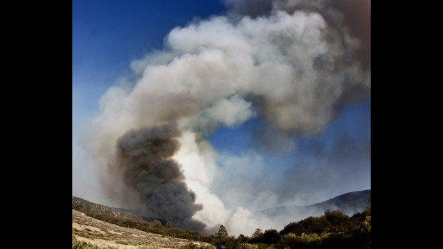 The smoke plume from a fire in the Los Padres National Forest, which began on June 16, billows into the sky. The fire burned more than 500 acres before it was contained.