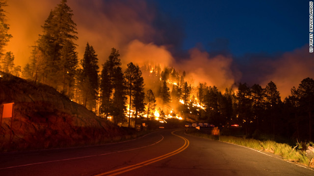 The Little Bear Fire spreads across a road in the Lincoln National Forest on June 13.