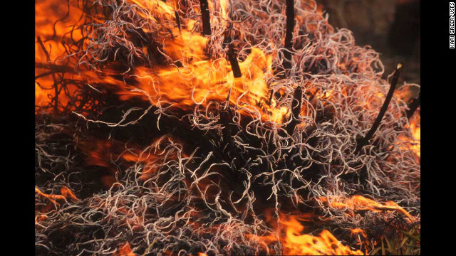 "Greer's first-place image in the ""wildland fire"" category shows intense heat coming from the Kinishba Fire in Arizona."