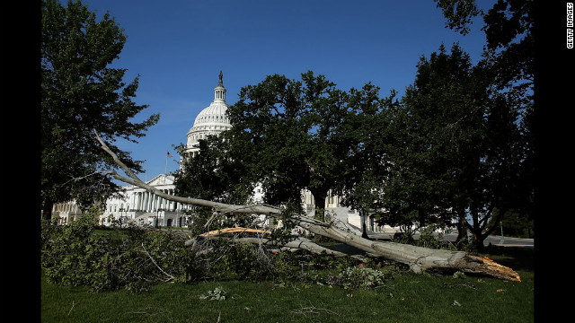 A fallen tree uprooted following heavy storms in the DC region lies on the grounds of the U.S. Capitol.