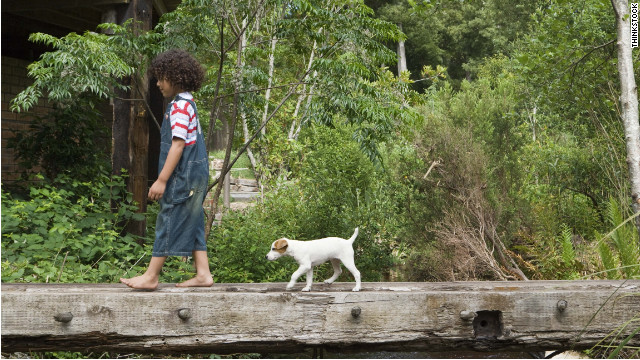 Pets may make children healthier