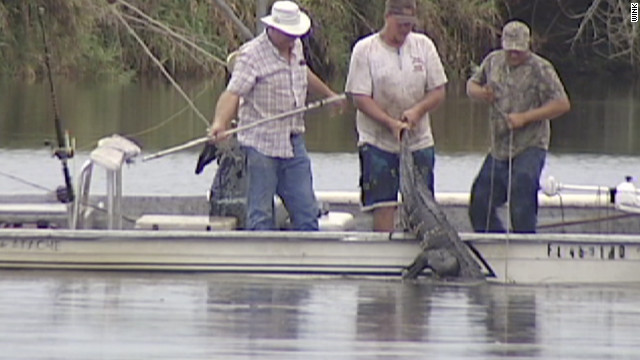 Teen uses &#039;Swamp Men&#039; move to save self from alligator
