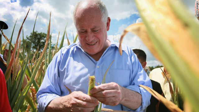 Illinois Gov. Pat Quinn examines a drought-damaged ear of corn near Waltonville, Illinois, on July 16. 