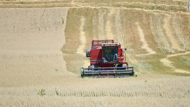 Farmer Ed Schoenberg and his son harvest oats early in attempt to salvage their drought damaged crop near Burlington, Wisconsin, on July 17.