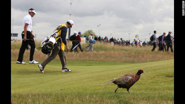 Robert Allenby of Australia and his caddy, Darren May, walk alongside a pheasant on the sixth fairway during the second round of the 141st Open Championship on Friday.