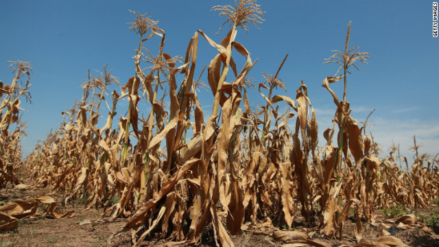 Farmer: &#039;If you eat, this drought will affect you&#039;