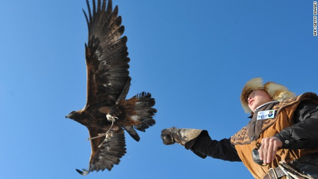 """Most of eagle handlers are happy to make a living posing for photographs for tourists,"" says eagle trainer Paul Pfander."