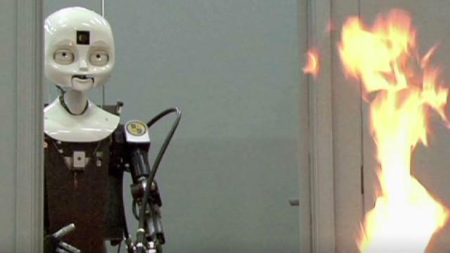 """Un laboratorio en EE.UU. recrea selvas y desiertos para """"entrenar"""" robots"""