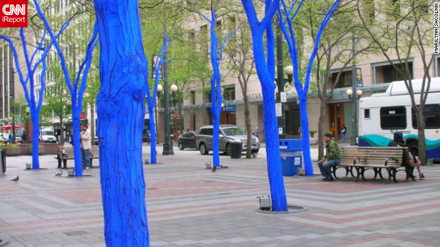 """The Blue Trees"" is a part of a <a href='http://ireport.cnn.com/docs/DOC-795836'>public art installation in Seattle, Washington</a>, in the downtown area. The art installation is by Australian artist, Konstantin Dimopoulos."