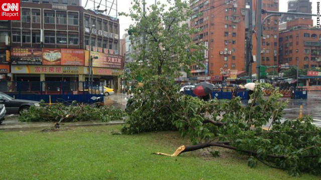 CNN iReporter Peter Chiang captured this image of uprooted trees after Typhoon Saola swept through Taiwan's capital. &quot;Trees are uprooted everywhere here. Apart from that, in Taipei City it's largely fine, but outside the city there's a lot of flooding,&quot; Chiang said. 