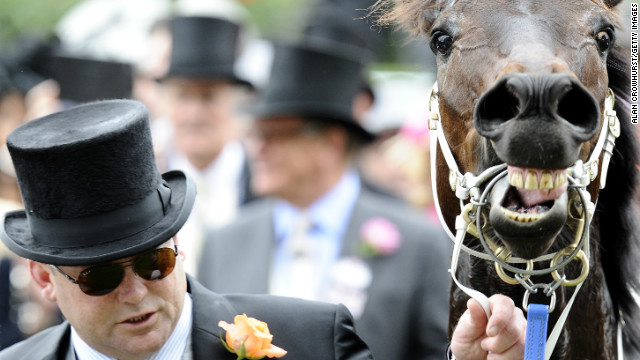 Trainer Peter Moody with Black Caviar after the mare's win in the 2012 Diamond Jubilee Stakes at Royal Ascot. He is undecided if she will race again.