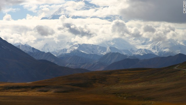 The area of Denali National Park where a bear killed a man Friday is closed