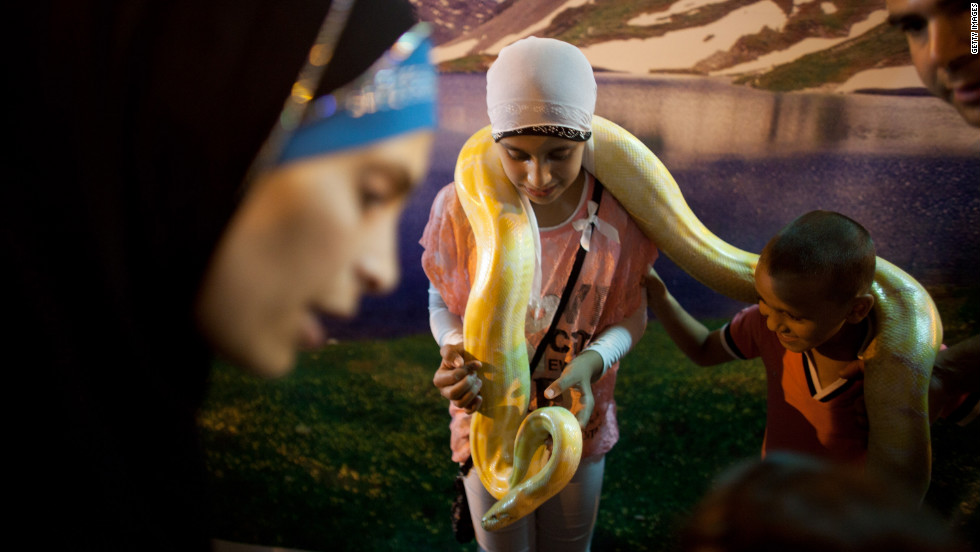 Israeli Arabs play with a pet snake at an amusement park Monday in the old city of Acre, Israel. Muslims worldwide have been celebrating the Eid al-Fitr holiday, marking the end of the holy fasting month of Ramadan.