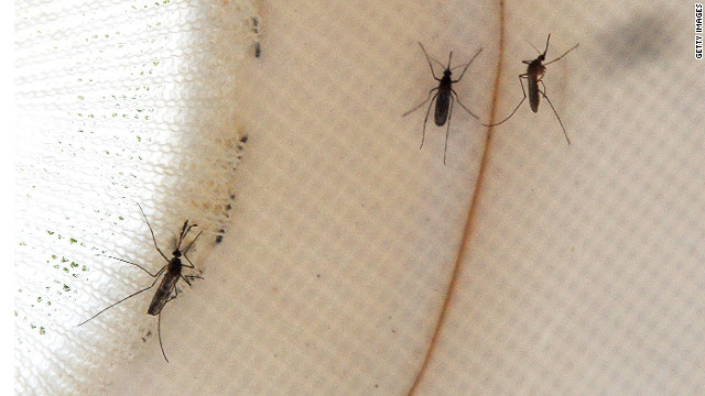 West Nile outbreak falls short of 2003 numbers