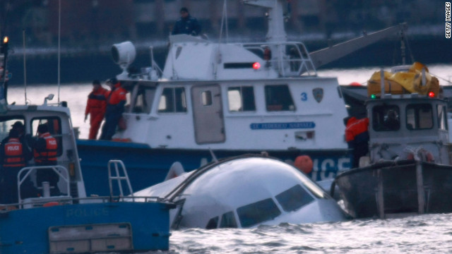 The crash of a US Airways flight into New York's Hudson River in January 2009 brought the problem of bird strikes to public attention.