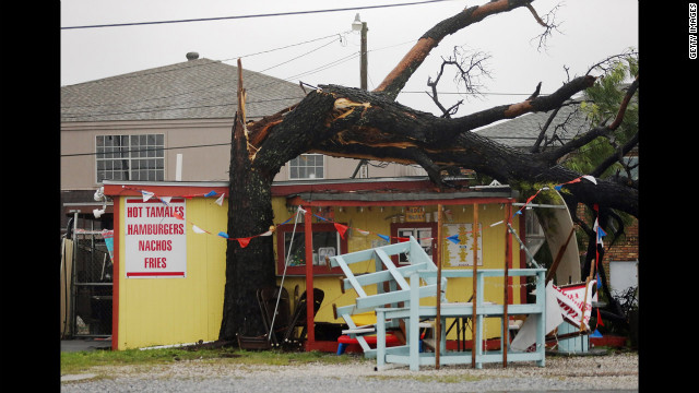 A tree toppled by Isaac stretches across the roof of a food stand in Arabi, Louisiana.