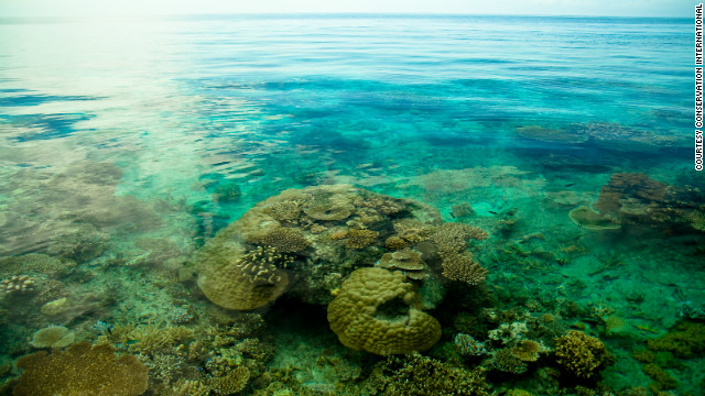 The Pacific Oceanscape is an ambitious intitiative to preserve and sustainably manage an area covering 10% of the world's oceans. 