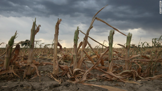 Rain clouds gather over the remnants of parched corn stalks on the plains of eastern Colorado, United States.