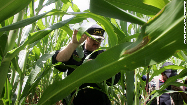 Erwin Sperisen, former chief of Guatamela's national police, inspects seized marijuana plants in this 2006 photo.