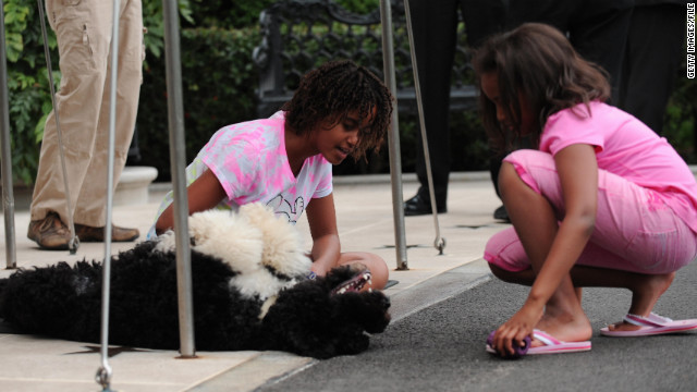 Sasha and Malia play with Bo as they wait for their Dad's helicopter to land on the South Lawn of the White House on September 15, 2009.