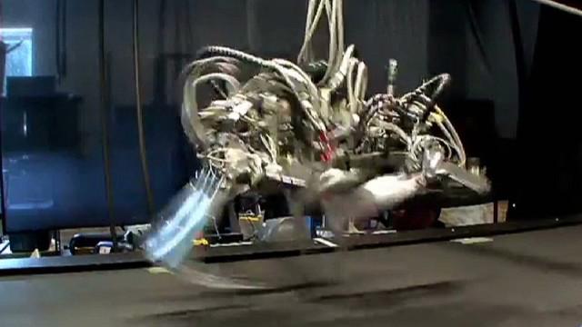 """Un veloz robot guepardo supera al """"hombre más rápido del mundo"""""""