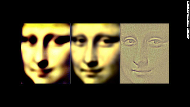 "This is a simulation by Margaret Livingstone of what you perceive when you view the ""Mona Lisa"" in your peripheral vision, on the left and middle, and straight-on. Note how the smile changes."