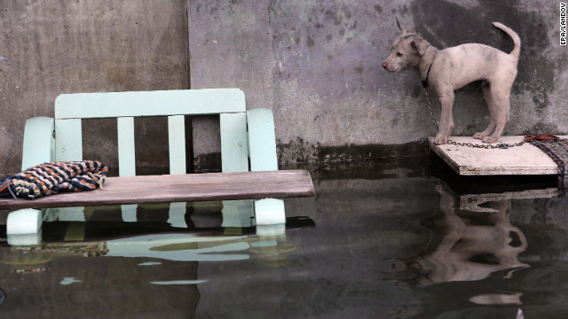 A dog stands on a plank outside a flooded house a day after heavy rains and high tide caused flooding in Malabon City, Philippines, on Sunday, September 16. Parts of Manila were under 6 feet of water Saturday. More than 400 people had to flee their homes, officials said. &lt;a href='http://www.cnn.com/2012/08/07/world/gallery/philippines-flooding/index.html' target='_blank'&gt;See photos of last month's flooding of Manila from monsoon rains.&lt;/a&gt;