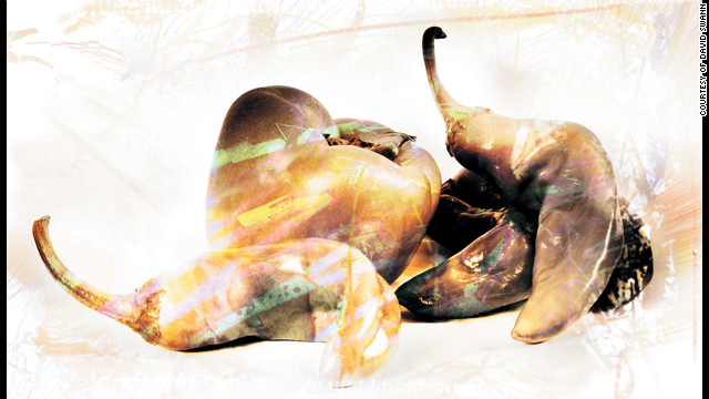 """Still Life #2,"" <a href='http://www.dswann.com' target='_blank'>David Swann</a>. The artist used his digital camera to photograph these peppers, then manipulated the image with Brushes, ToonPaint, Photo fx, Artista Oil and Pic Grunger on his iPhone."