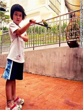 "Other memories are more personal. In this image, a little girl shows off her ability to hold a small bird along the ""Pet Walk"" in Serangoon North, an apartment cluster in the north-central part of Singapore that is often crowded with pet enthusiasts."