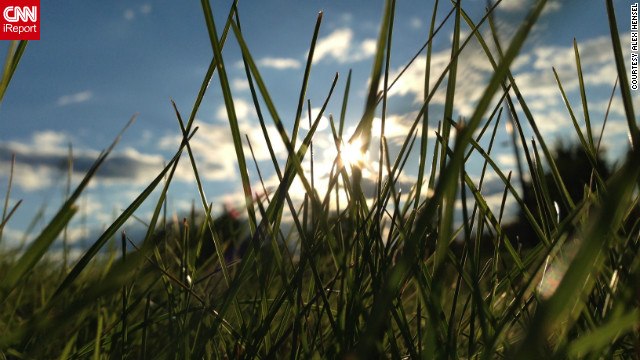Alex Hensel <a href='http://ireport.cnn.com/docs/DOC-847605'>used the new iPhone 5</a> to shoot this picture of grass blades blowing in the wind as the sun began to set in Deerfield, Illiniois.