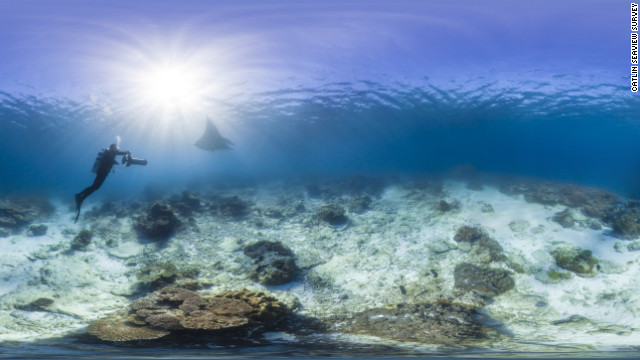 A Catlin Seaview team member films a manta ray near Lady Elliot Island and the Great Barrier Reef.
