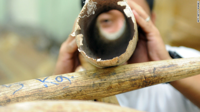 Confiscated elephant tusks seized in Manila are shown by the Philippine's Protected Areas and Wildlife Bureau.